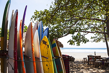 Surf Boards Available For Rent In Playa Hermosa, Nicaragua