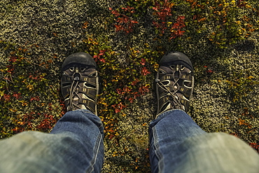 Person's Feet Standing The Autumn Colours Of The Icelandic Tundra, Iceland