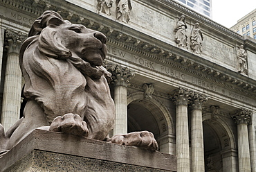Lion Statue Outside New York Public Library, New York City, New York, United States Of America