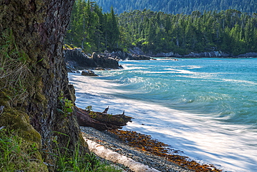 The Surf Pounds The Shoreline, Haida Gwaii, British Columbia, Canada