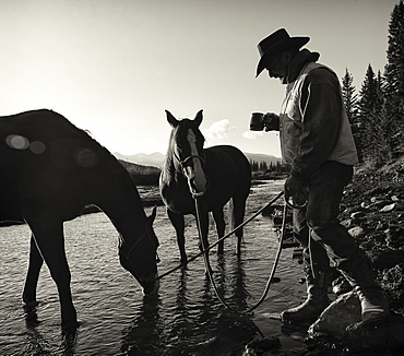 Cowboy Having His Morning Coffee At The Edge Of A River With His Horses, Ya-Ha-Tinda Ranch, Clearwater County, Alberta, Canada