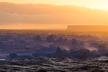 Tabular Iceberg At Sunrise, Antarctica