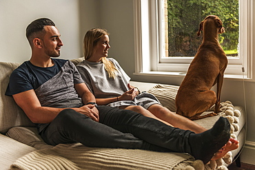 Couple On Sofa Watching Dog By Window, Reigate, England