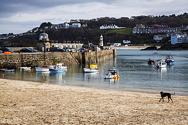 Fishing Boats In St. Ives Harbour, St. Ives, Cornwall, England