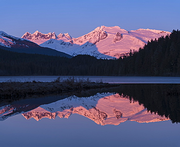 Mountains Glowing Pink At Sunrise And Silhouetted Forest Reflected In A Tranquil Lake, Juneau, Alaska, United States Of America