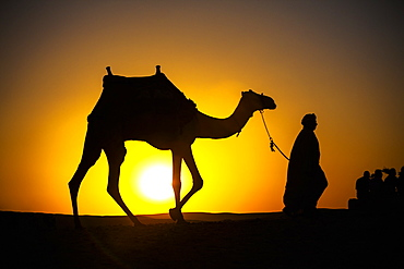 An Egyptian Man Silhouetted By The Setting Sun, Leads A Camel Across The Desert, Cairo, Egypt