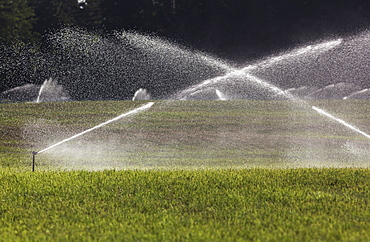 Irrigation Watering A Hay Field In The Cowichan Valley, Vancouver Island, British Columbia, Canada