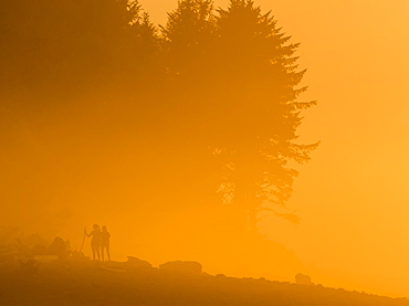 Sunset lights up the fog with a golden glow on the Oregon Coast, Seaside, Oregon, United States of America