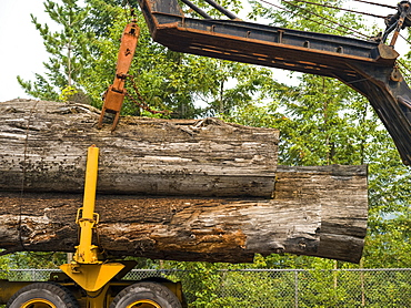 Large logs on a transport truck being lifted off, Riondel, British Columbia, Canada