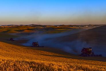 Harvesting Grain In The Palouse Region Of Eastern Washington, Washington, United States Of America