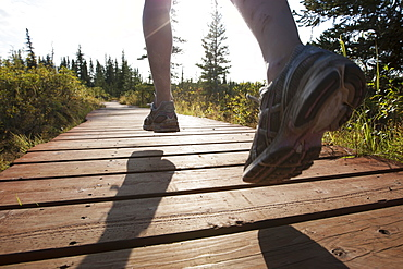 The Feet Of A Runner Over A Wooden Boardwalk Through A Forest, Homer, Alaska, United States Of America