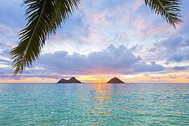 Beautiful Sunrise At Lanikai Beach Overlooking The Twin Makulua Islands, Kailua, Oahu, Hawaii, United States Of America