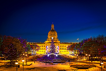 Alberta Legislature Building Illuminated And A Christmas Tree With Colourful Lights On The Trees For Decoration At Christmas Time, Edmonton, Alberta, Canada