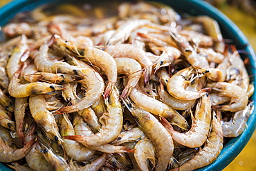 Fresh Prawns For Sale At Maputo's Central Market, Maputo, Mozambique