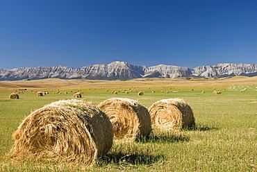Hay Bales, Alberta, Canada
