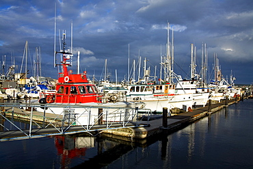 Port Townsend, Washington State, Usa; Marina With Boats