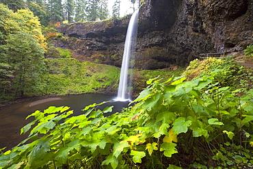 South Silver Falls, Silver Falls State Park, Oregon, Usa