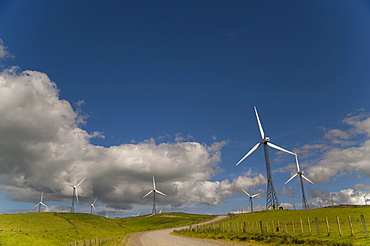 Wind Turbines In A Field With A Road Going Through; Palmerston North, New Zealand