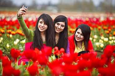 Woodburn, Oregon, United States Of America; Teenage Girls Playing In The Tulip Fields Of Wooden Shoe Tulip Farm