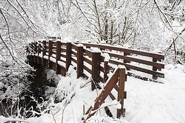 Oregon, United States Of America; Snow Covered Bridge In Silver Falls State Park