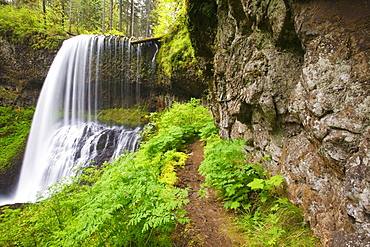Oregon, United States Of America; North Middle Falls In Silver Falls State Park