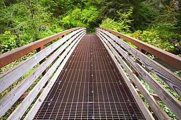 Oregon, United States Of America; A Walking Bridge In Silver Falls State Park