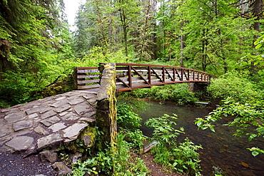 A Bridge, Near North Middle Falls In Silver Falls State Park; Oregon, USA
