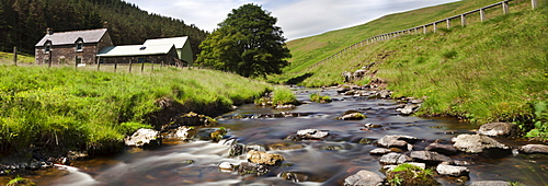 A Creek Running Past Houses; Cheviot Hills Northumberland England