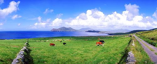 Valentia Island, Ring Of Kerry, County Kerry, Ireland