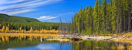 Wilmore Wilderness In The Fall, Alberta, Canada