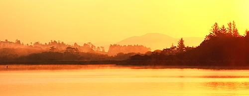 Oysterbed, County Kerry, Ireland, Near Sneem