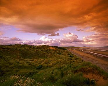 Murlough National Nature Reserve, Dundrum Bay, County Down, Ireland