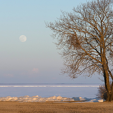 Full Moon Over Frozen Lake Winnipeg In Winter, Hecla-Grindstone Provincial Park, Riverton, Manitoba, Canada