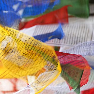 Colourful Prayer Flags, Thimpu, Bhutan