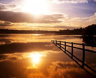 Lake Near Drumshanbo, Lough Scur, County Leitrim, Ireland