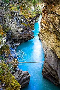 Mountain River Canyon Outlet, Jasper National Park, Alberta, Canada