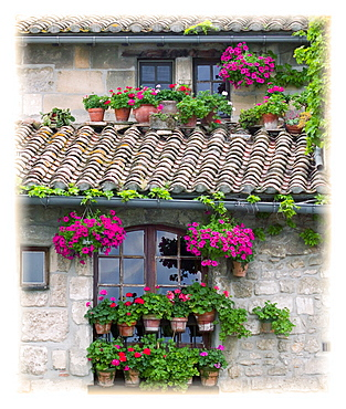 Flower Pots In Windows In Arles, Provence, France