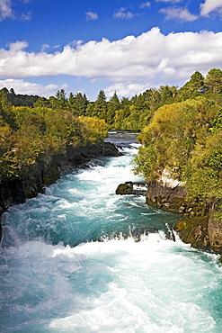 Waikato River, Taupo, New Zealand