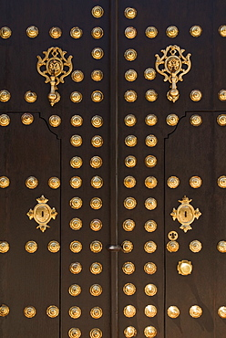 Wooden Doors With Brass Insets