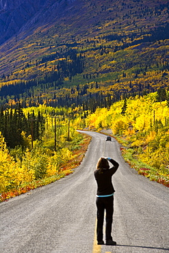 Photographer On Yukon Road, Canada