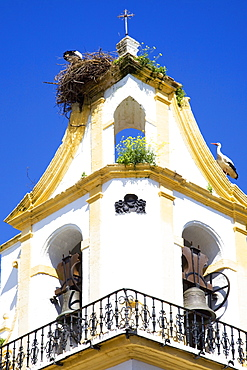 Chiclana De La Frontera, Andalusia, Spain, A Stork In It's Nest On A Church Steeple