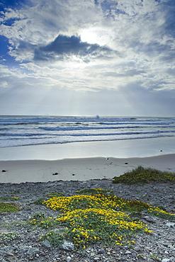 Los Lances Beach Along Costa De La Luz, Tarifa, Cadiz, Andalusia, Spain