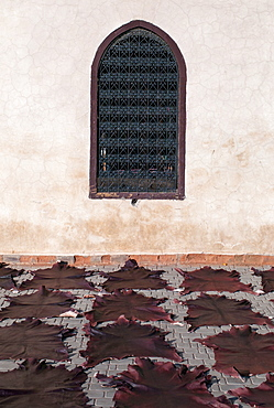 Animal skin mats in a row on the ground facing a wall with a screened window