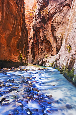 Sunlight reflecting in the virgin river narrows in zion national park, Utah, united states of america