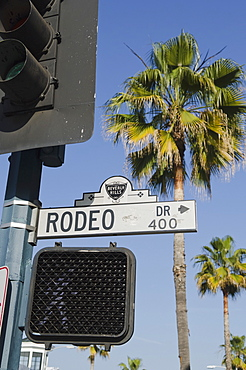 Rodeo Drive Street Sign With Palm Tree In Background, Los Angeles California United States Of America
