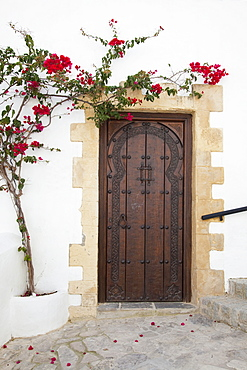 Wooden Door On A White Building With A Blossoming Vine Growing On The Wall, Vejer De La Frontera, Andalusia, Spain