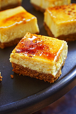 Creme Brulee Cheesecake Squares