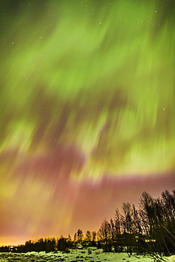 Northern Lights In The Sky Above The Snow Covered Mudflats Of Knik Arm, Tony Knowles Coastal Trail, Alaska, United States Of America