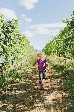 A Young Girl Walks Down A Path Between The Rows Of Trees In An Orchard, Peachland, British Columbia, Canada
