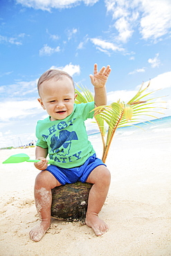 A Baby Boy Sits On A Coconut And Palm Frond On The Beach At The Water's Edge, Kailua, Oahu, Hawaii, United States Of America